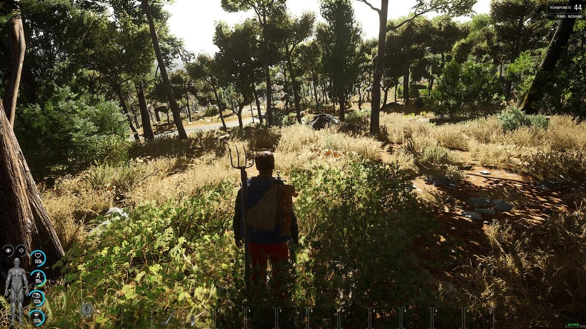 Bauer im Wald