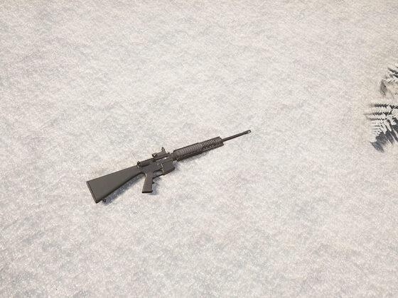Red Dot auf der M16A4