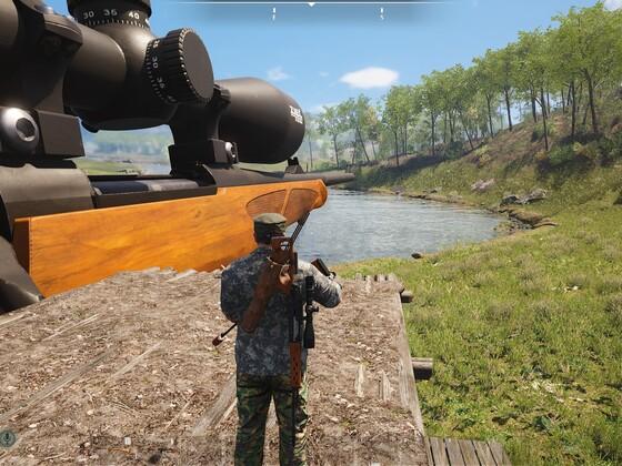 Rail-Gun