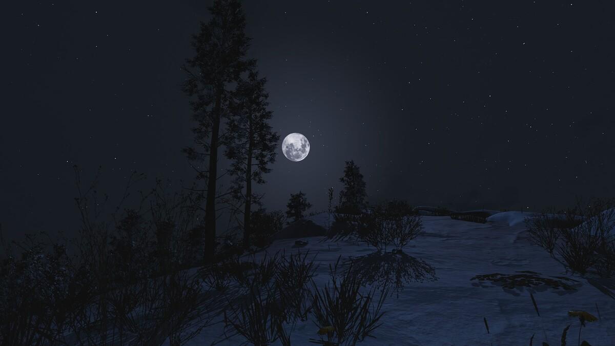 Nachts im Schnee
