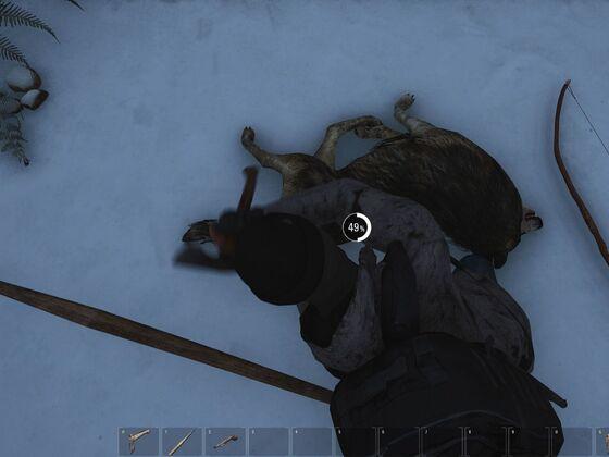 Nur ein toter Wolf...