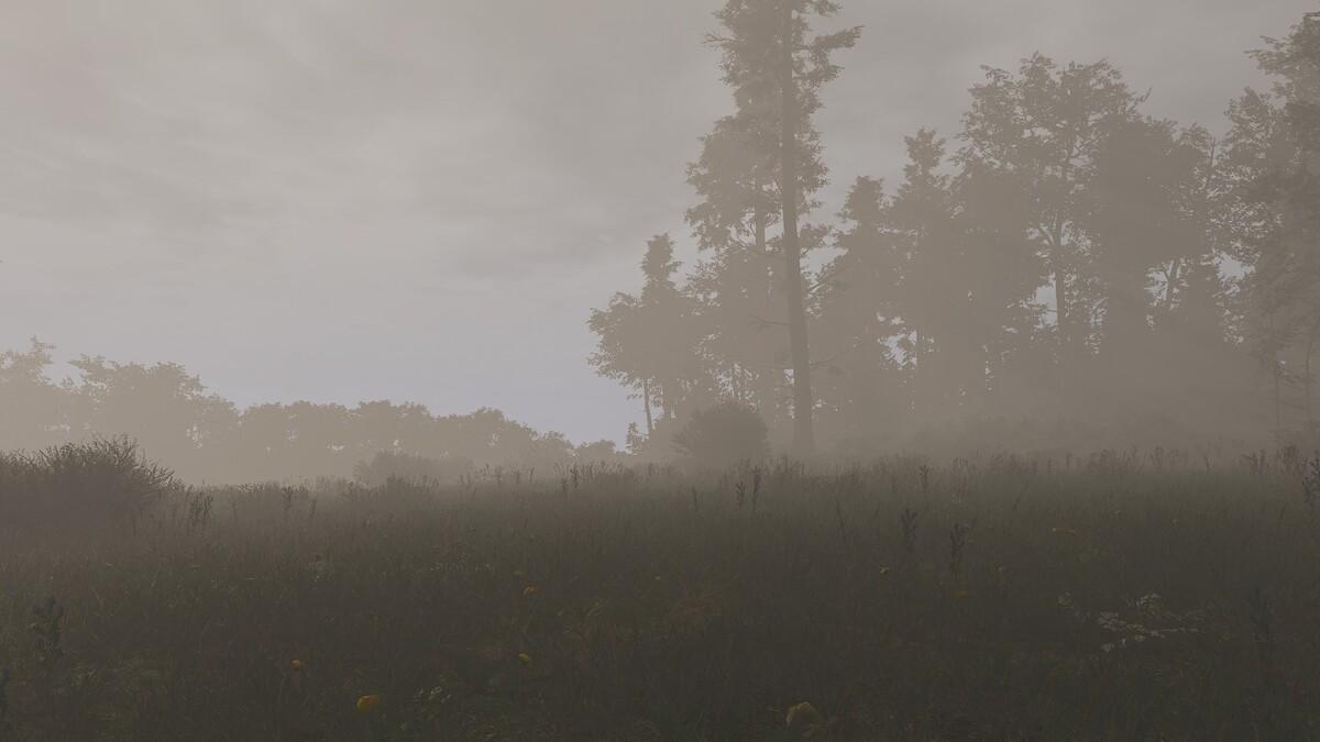 Nebel2