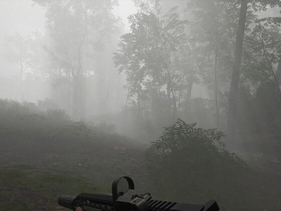 Nebel mit durchscheinenden Sonnenstrahlen