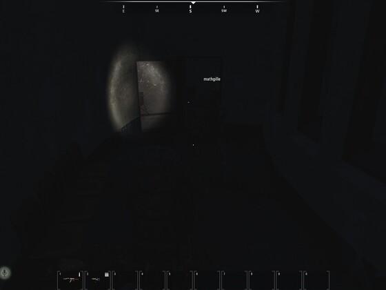 Taschenlampe auf der Desert Eagle