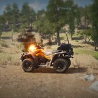 Quads verbrennen